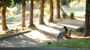 reading-on-bench_0-300x168